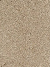 We offer a wide selection of Carpet!  Click here to learn more!